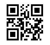 PIP QR Code