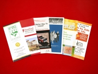 Medical Industry Tri-fold Brochure Printing Collection