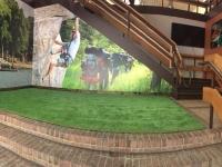 Boy Scouts Interior Wall Murals