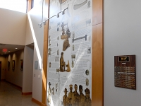 Boy Scouts Wall Graphic