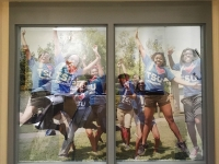 TSU window graphics