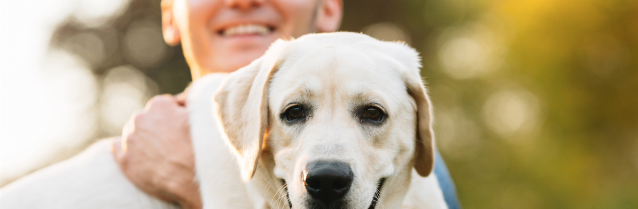 Promo Items – Sit & Stay, your prospects love their pets
